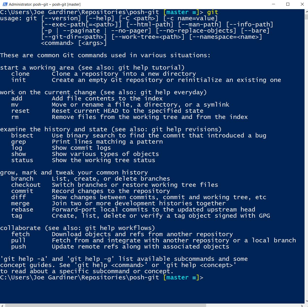 Git Powershell output